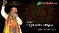 Hits of Nandu Ji Juke Box Vol-1 | Beautiul Shyam Bhajan